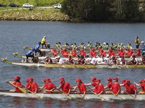 dragon boat nowra all welcome for nowra spring regatta south coast register