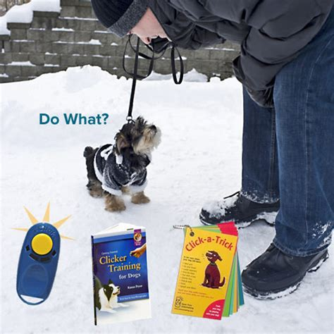 clicker for puppies clicker for dogs buddy id