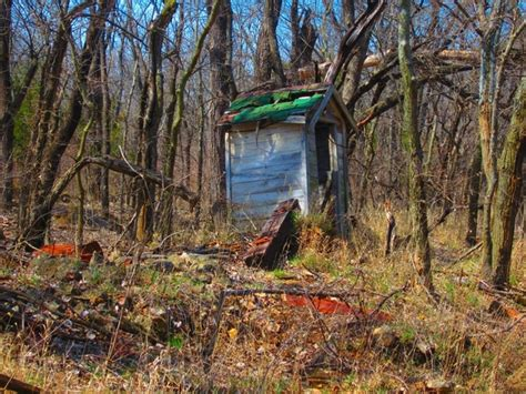 a shed alone in the woods photorator