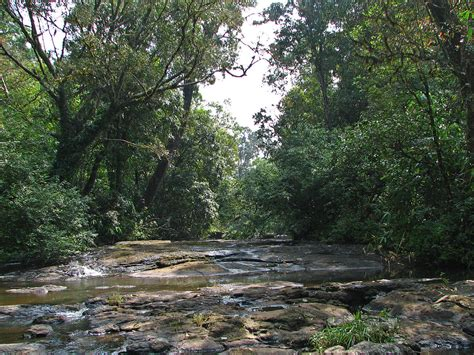 stream bed kerala travel guide at wikivoyage