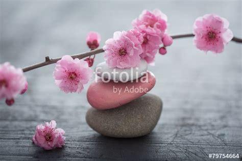 Fotolia Imagenes Zen   quot fleurs zen quot photo libre de droits sur la banque d images