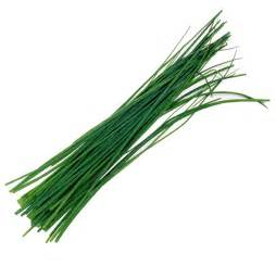 How To Preserve Fresh Flowers - chives herbs unlimited