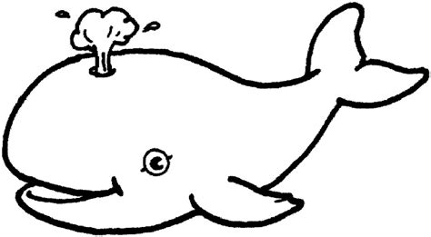 coloring pages sea animals free coloring pages of sea sea animal