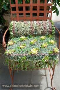 succulent container gardens debra baldwin 17 best images about cactus succ to info on