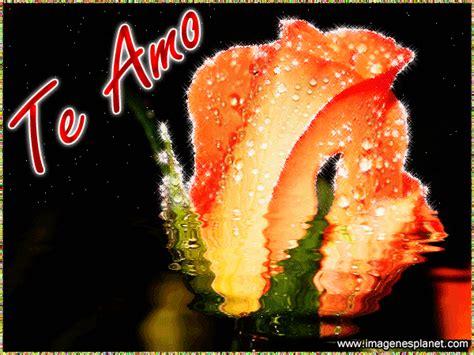 flores animadas mas hermosas con movimiento y frases la rosa amarilla mas tierna con frases romanticas de amor