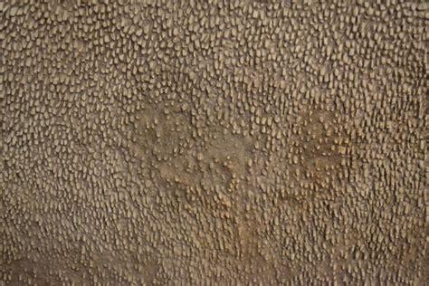 mosaik le ravenna mosaico impressions i