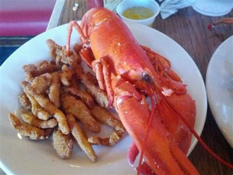 all you can eat lobster and seafood picture of boston