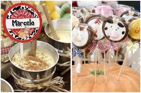 country style birthday ideas country farmyard 3rd birthday pizzazzerie