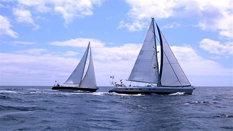 catamaran charter hilton head sailing
