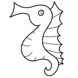Seahorse Colouring Pages Page 2 sketch template