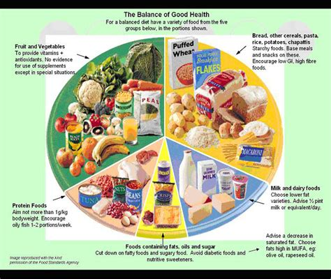 Healthy Diet by Eat A Healthy Balanced Diet Gutom Na