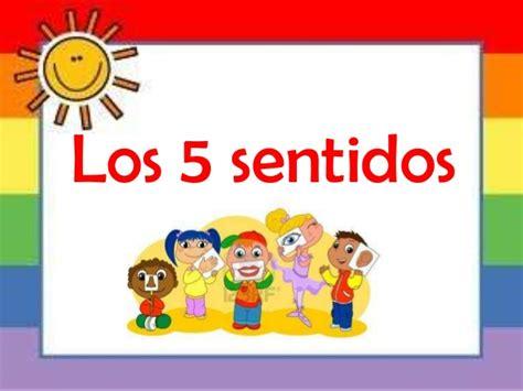 los 5 sentidos de los cinco sentidos