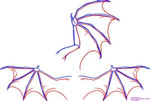 How To Draw A How To Draw Wings Step By Step Dragons Draw A