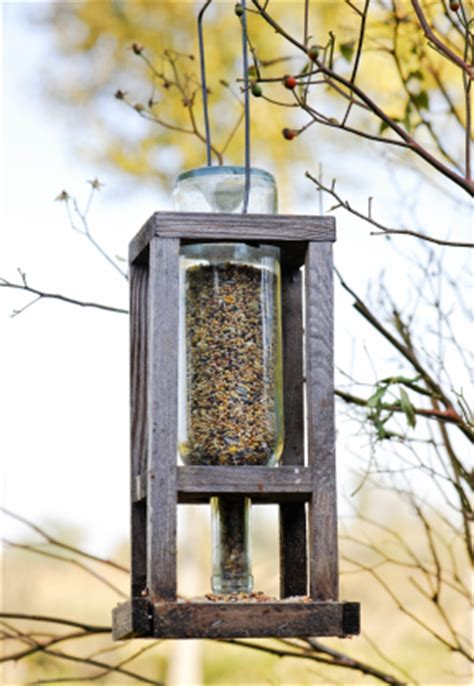 feed the birds without getting an asbo debugged