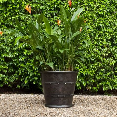Copper Planters For Sale by Copper Garden Planter Jardiniere For Sale At 1stdibs