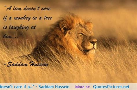 lion biography in english lion king quotes and sayings quotesgram