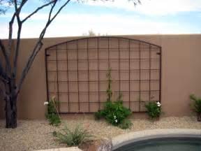 Ideas For Metal Garden Trellis Design Trellis Designs Garden Trellis Designs Metal Garden Trellises Arizona Trellis Gardening
