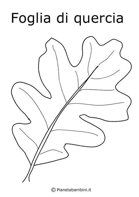 disegni da colorare fiori e frutta disegni da colorare fiori e frutta 28 images fiori da