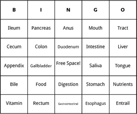 Human Bingo Cards Template by Human Digestion Bingo By Bingo Card Template