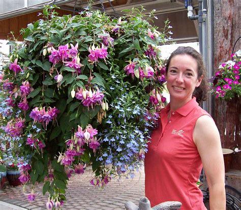 Hanging Baskets   Dayton?s Garden Center for Annuals