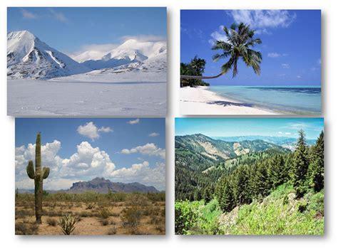 exle of habitat habitat exles images