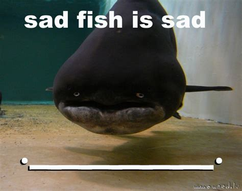 Is Sad by Sad Fish Is Sad Owned Lv