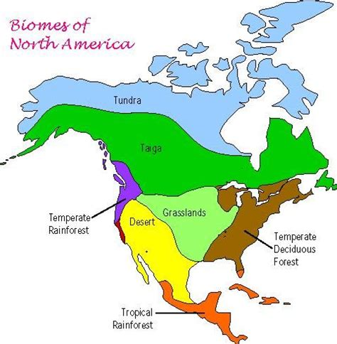 biomes of the united states map 44 best images about bio 112 project american