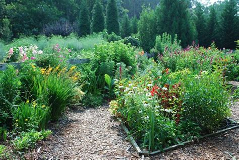 Cut Flower Garden 12 Best Images About Cutting Flower Garden On Gardens Seasons And Garden Ideas