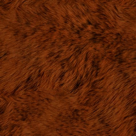 brown fur pattern black bear fur texture