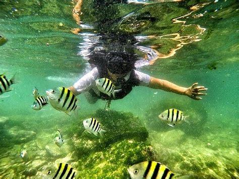 pantai jungwok  mistis  pesisir laut pantai selatan