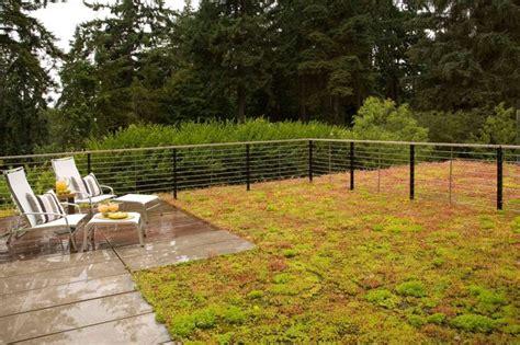 backyard fencing ideas for dogs fence for dog run garden dog runs etc pinterest