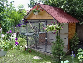 backyard aviary 17 best ideas about small bird cage on bird