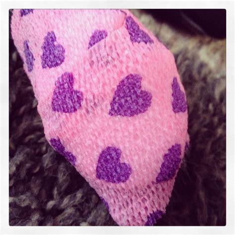 squamous cell carcinoma in dogs pin by s 1970 on stuff