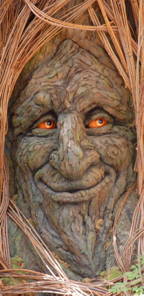 tree faces 25 best ideas about tree faces on pinterest weird trees