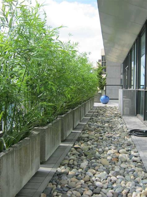 Balkon Sichtschutz Pflanzen 170 by Rechteckige Beton K 252 Bel Mit Schirmbambus Auf Dem Balkon