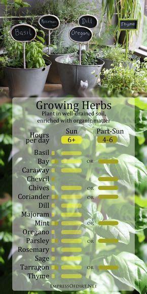 diagrams   gardening   easier plants
