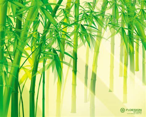 Wallpaper Sticker Motif Bambu Hijau heh i like bamboo trees o o i wtk what s your lucky