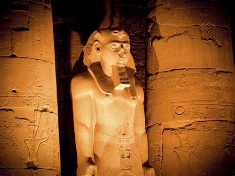 Ancient Egypt Evidence Of Inflammation Infection And