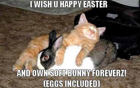 Hilarious Easter Memes - funny easter memes 06 jpg