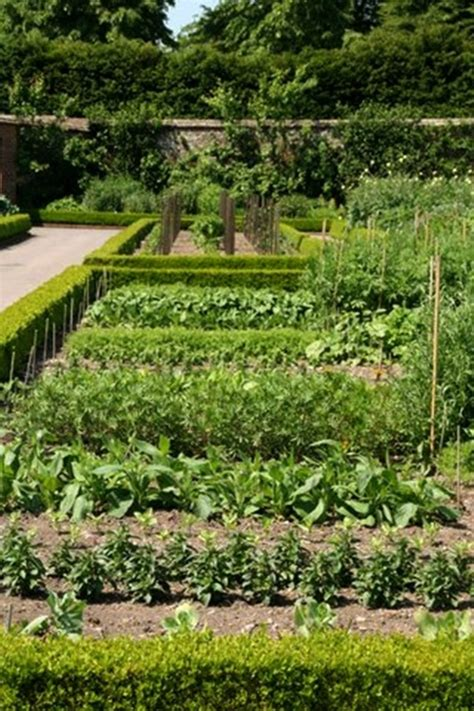garden bed borders edging ideas  vegetable  flower gardens