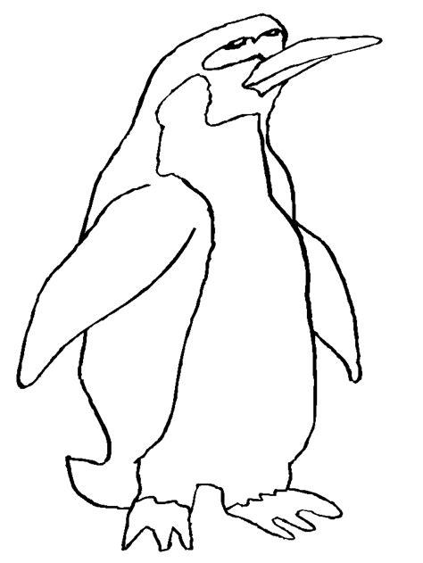 galapagos penguin coloring page cartoon penguin coloring pages for kids coloring pages