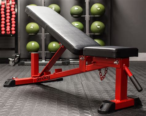 build weight bench weight benches the definitive guide gym in your home