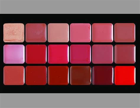 Make Lip Color Pallette lipstick palettes that are most loved and used by the makeup fanatics