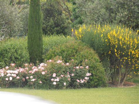 giardini in toscana progettazione e realizzazione giardino in toscana