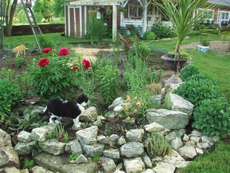 Rock Landscaping Ideas Backyard Rock Garden Design Ideas Small Rock Garden Ideas Need
