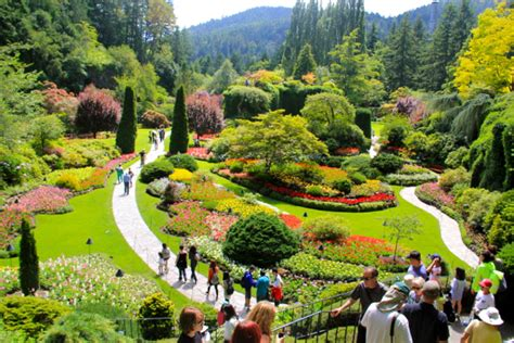 Butchart Gardens Vancouve | butchart gardens blooms all year vacay ca
