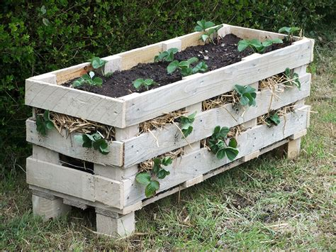 Make Planters by How To Make A Better Strawberry Pallet Planter Lovely Greens