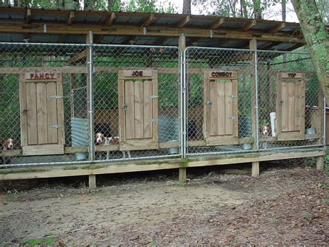 backyard dog pens dog hunting kennels southmississippirabbithunting my