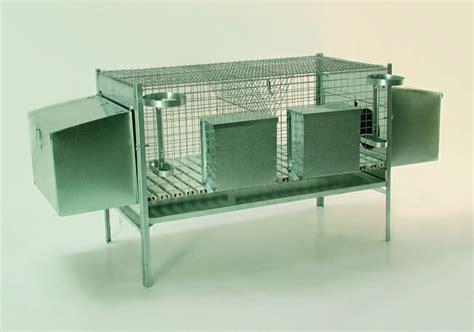 gabbie per conigli da allevamento gabbie per conigli da ingrasso home visualizza idee immagine