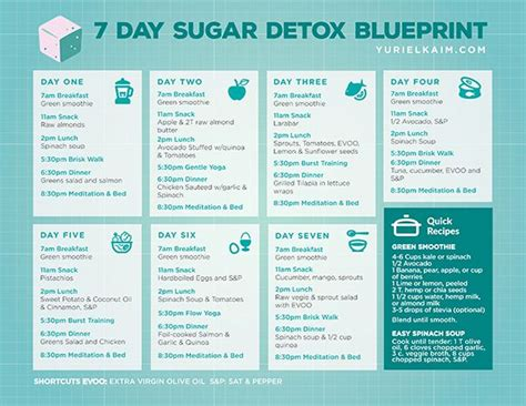 Easy Detox Meals by Sugar Detox Plan A 10 Step Blueprint For Quitting Sugar